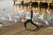 Yoga Mit Möwen