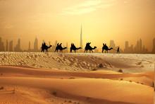 Camel Caravan On Sand Dunes On...