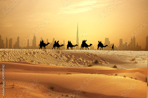 Camel caravan on sand dunes on Arabian desert with Dubai skyline at sunset