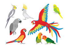 Set Of Vector Cartoon Colorful...