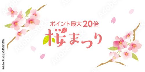 Fotografia  優しい桜まつり