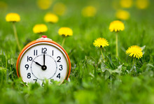 Daylight Savings Time, Spring Forward Concept - Retro Alarm Clock And Dandelion Flowers In The Grass