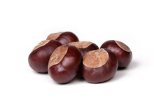 Small Pile Of Fresh Chestnuts, Many Conkers Isolated On White Background, Closeup