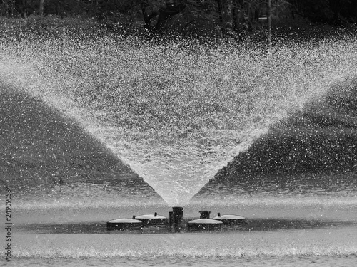 Canvas Print black and white fountain in the park