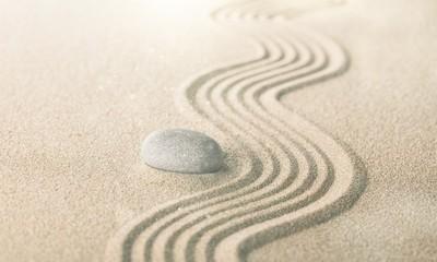 Fototapeta na wymiar zen garden with raked sand and a smooth stone