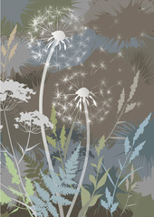 Panel Szklany Dmuchawce Abstract soft pastel background with wild herbs and dandelions. Floral background. Botanical composition. Vector illustration.