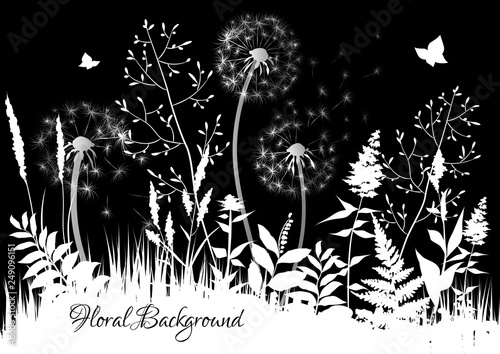 Black and white background with wild herbs and dandelions. Floral background. Abstract landscape. Vector illustration.