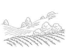 Field Hill Graphic Black White Landscape Sketch Illustration Vector