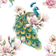 Watercolor Peacock Pattern