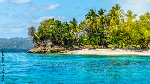Fototapety, obrazy: Paradise island with white beach, palm trees and turquoise waters. Tropical holiday concept.