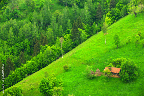 Tuinposter Groene green landscape with country road in the mountains