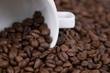 Weiße Kaffeetasse liegt zwischen Kaffeebohnen