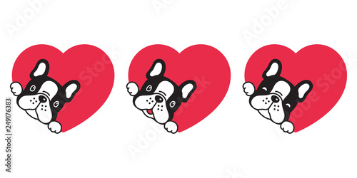 Whiskers Dog Cat Snout Character - Cartoon - Animal Figure Boston Terrier  Transparent PNG
