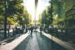 canvas print picture - Green Urban Scene - Berlin