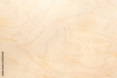Photo Real natural light birch plywood. High-detailed wood texture.