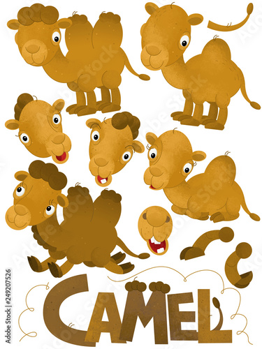 cartoon scene with set of camels on white background with sign name