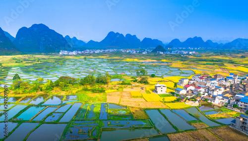 Foto auf Gartenposter Reisfelder Rice field scenery in autumn