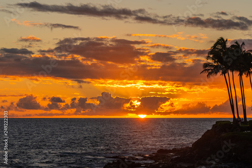 Tropical orange sunset over ocean with palm trees