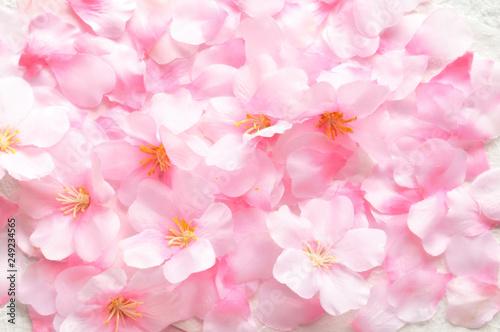 Keuken foto achterwand Kersenbloesem 桜の花 壁紙