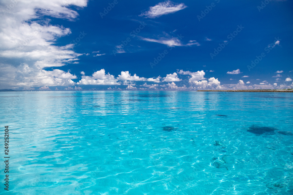 Fototapety, obrazy: 青く透明な南国の海