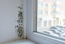 Black Mould And Fungus On Wall...