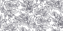 Seamless Pattern With Graphic Rose Flowers, Vector Floral Endless Background