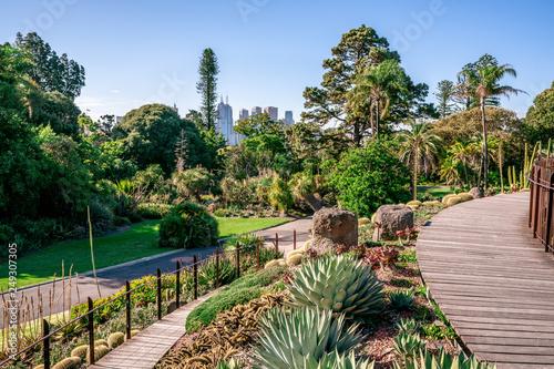 Foto  Royal Botanical gardens scenic view in Melbourne VicAustralia