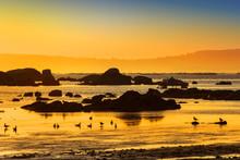 Seagulls And Coastal Rocks At ...
