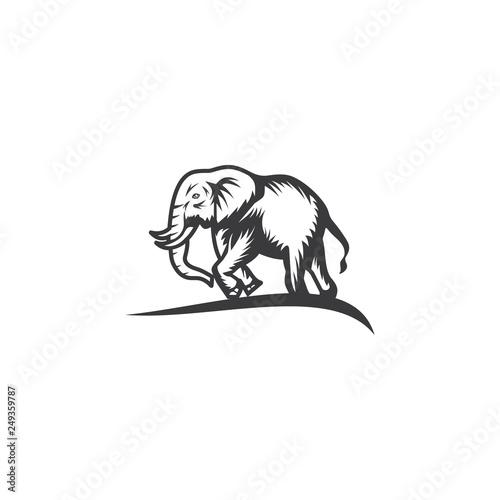 elephant logo vector design icon Wallpaper Mural