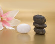 aroma, plant, wellness, symbol, stone, stability, soothing, relaxation, relax, pebble, balance, orchid, natural, flora, feminine, concept, blossom, being, beauty, white
