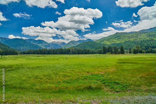 Fotografiet  Alpine Meadow With Mountains