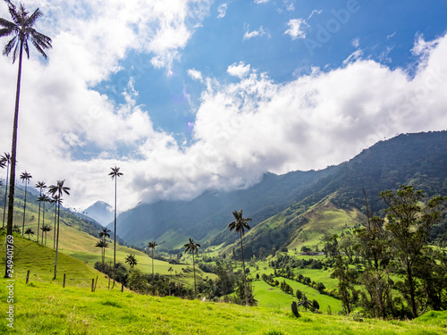 Beautiful day hiking scenery of Valle del Cocora in Salento, Colombia Wallpaper Mural