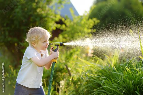 Fotografie, Obraz Funny little boy playing with garden hose in sunny backyard
