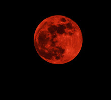 Red Moon Real / Full Blood Moon On Black Sky Dark Background - Selective Focus