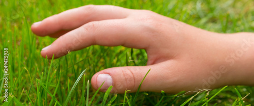 Fotografie, Obraz  child's hand on a green fresh lawn, a concept of perfect quality and a variety