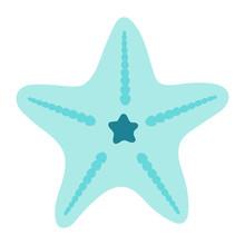 Star Fish Vector Icon Illustra...