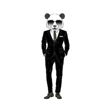 Humanized Panda Bear Cool Man Dressed Up In Black Business Suit. Hand Drawn Vector Illustration. Furry Art Image.
