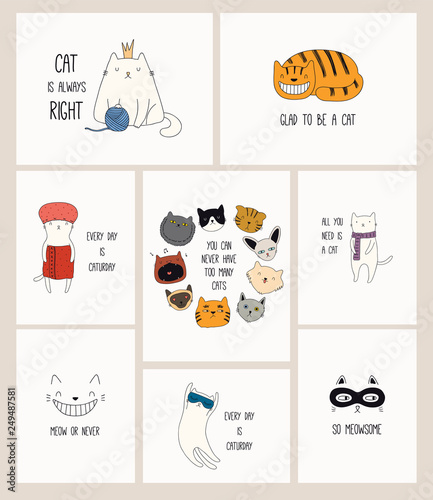 Tuinposter Illustraties Set of cards with cute color doodles of different cats with funny quotes for cat lovers. Hand drawn vector illustration. Line drawing. Design concept for poster, t-shirt, fashion print.