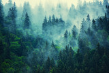 Fototapeta Natura - Misty mountain landscape