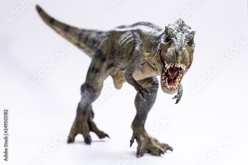 Fototapeta  T-rex isolated on white background