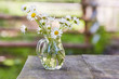 Charming still life with copy space chamomilles and daisies in water