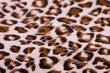 Fabric Texture Closeup.