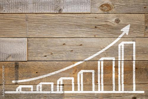 Obraz 粗い板に描かれた成長グラフ - fototapety do salonu