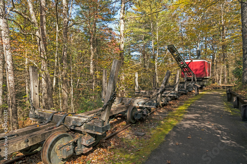 Fotografie, Obraz  Preserved Log Cars and Log Crane in a Forest