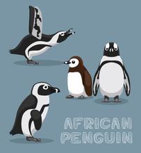 African Penguin Cartoon Vector...