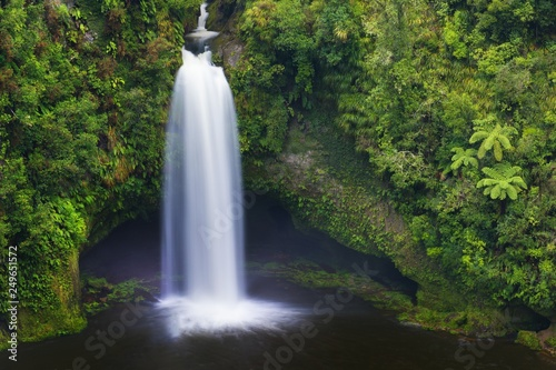 Rain forest to the North Island, New Zealand. Concept of active and ecological tourism. Omanawa Falls on a foggy morning. Beautiful waterfall background