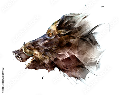 painted isolated bright face animal boar from the side Wallpaper Mural
