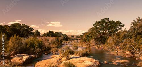 African landscape in the Kruger National Park, South Africa Fototapeta