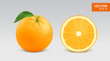Realistic Fresh Orange Vector Illustration, Icon. Whole And Half Slice Of Orange
