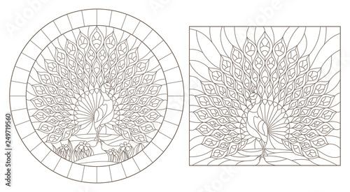 Fototapeta  Set of outline illustrations stained glass Windows with peacocks, dark outlines